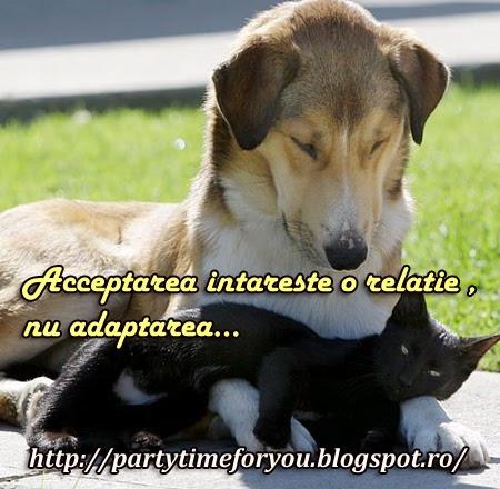 Acceptarea intareste o relatie nu adaptarea.