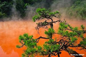 Dernier Fou du volcan