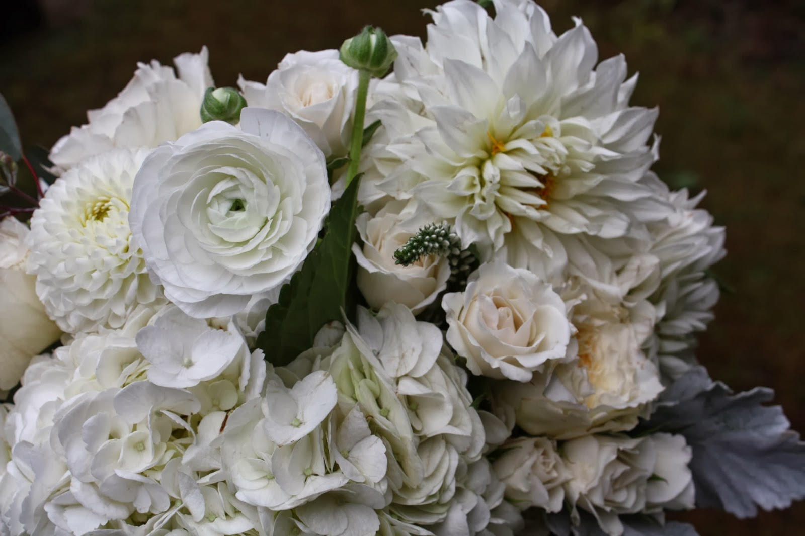 Googlier garland search date 20180216 a bit of the babies breath garland we made for the birch tree chuppah fandeluxe Images