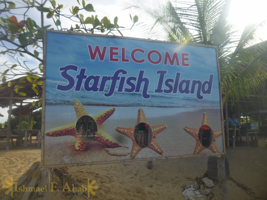 Starfish Island of Honda Bay, Puerto Princesa, Palawan