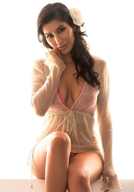 Actress Sophie Choudry Latest Hot