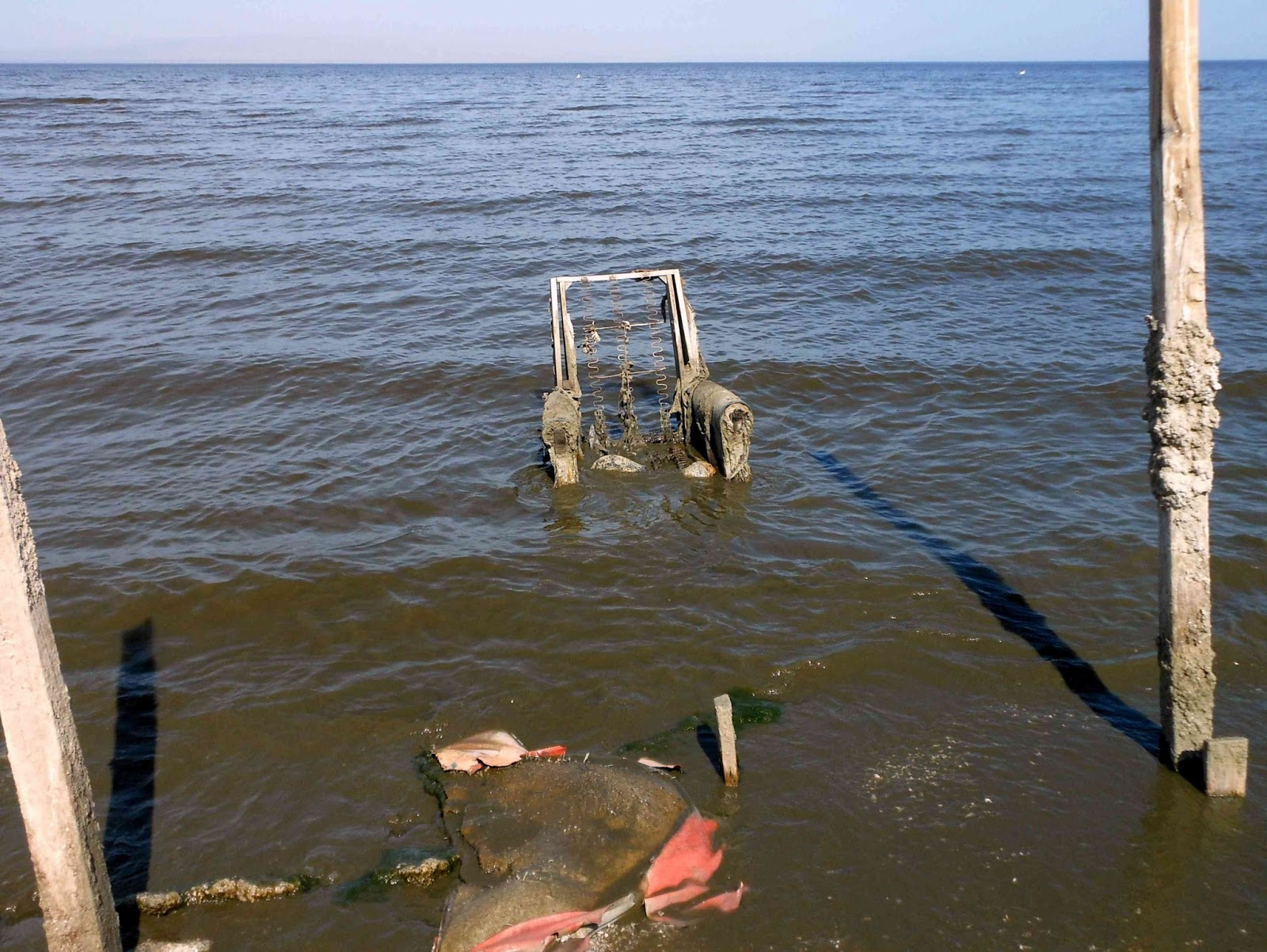 The marine installer 39 s rant yachting on the salton sea for Salton sea fishing