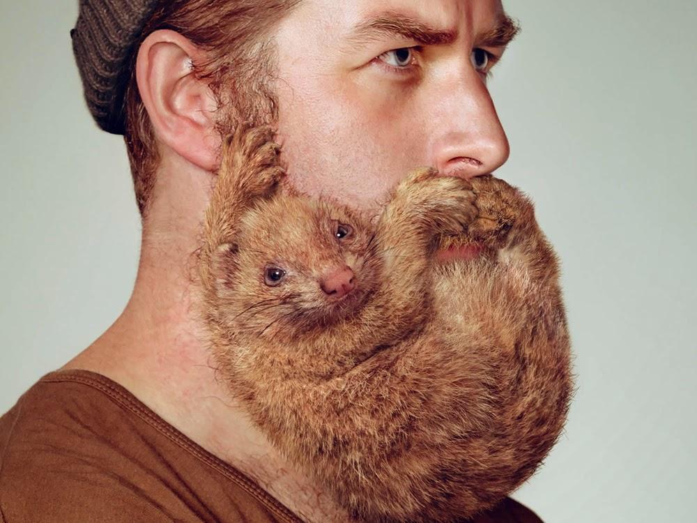 funny beard on face