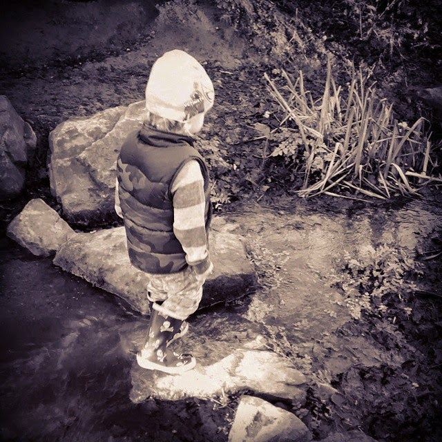 wading in a stream