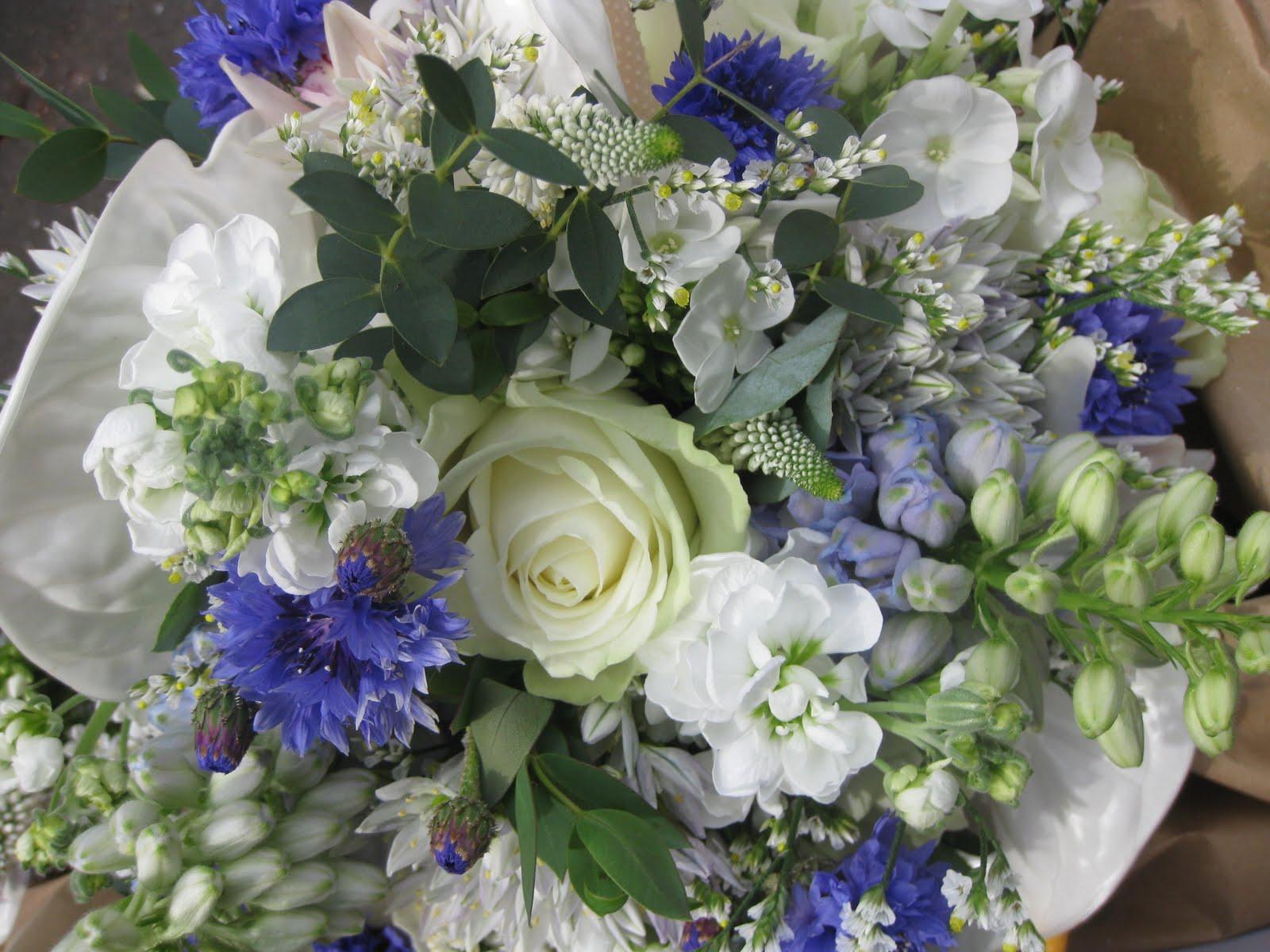 Laura coleman flowers september 2011 tuesday september 6 2011 mightylinksfo