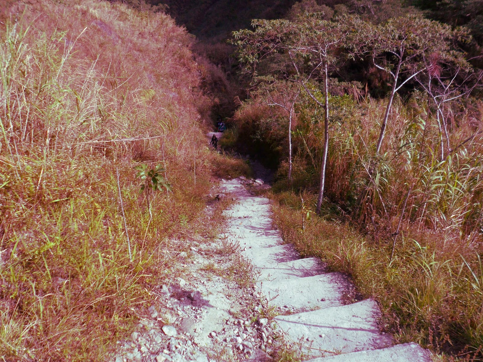 stairs to Pinatubo Lake