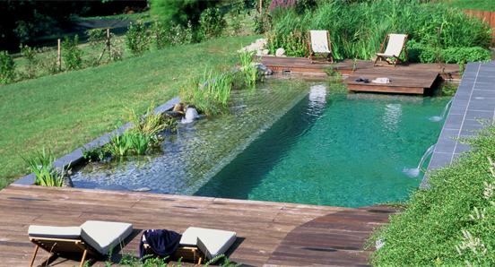 piscinas naturalizadas taringa