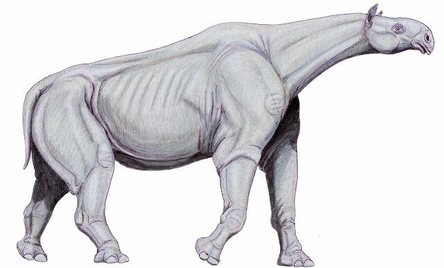 Indricotherium, mamifero gigantesco