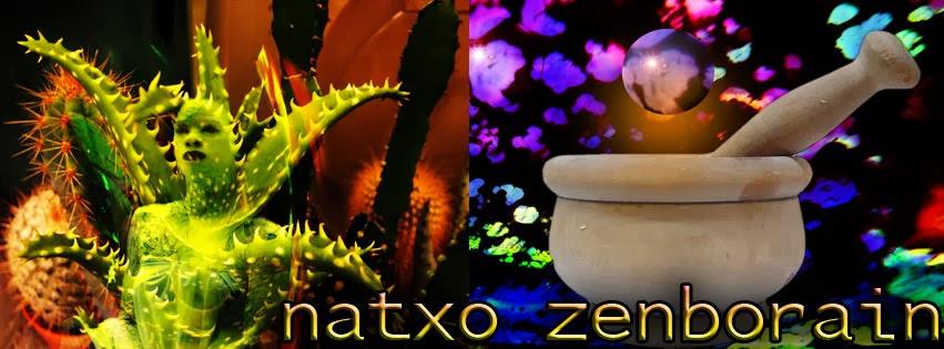Arte en Libertad  www.natxozenborain.com