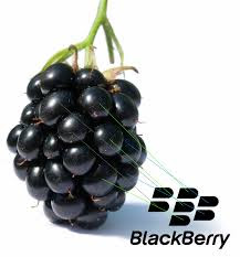 cara lengkap mendaftar paket blackberry 3 6 bulan