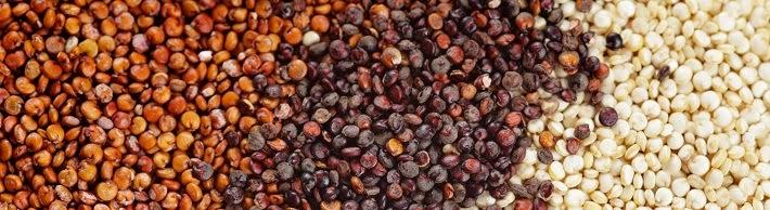 emagreça comendo quinoa