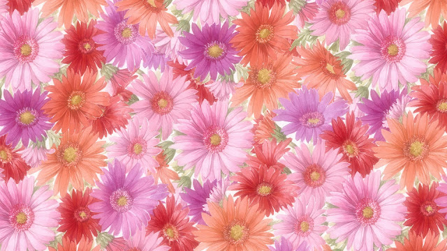 Flowers HD Wallpapers Free Download