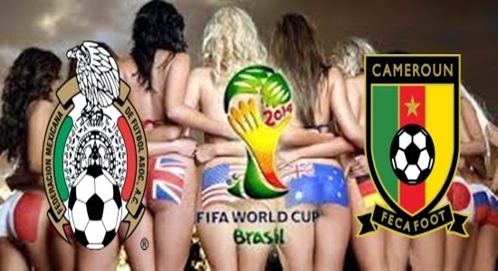 Aksi Supporter Word Cup 2014, Supporter Word Cup Camerun In Brasil