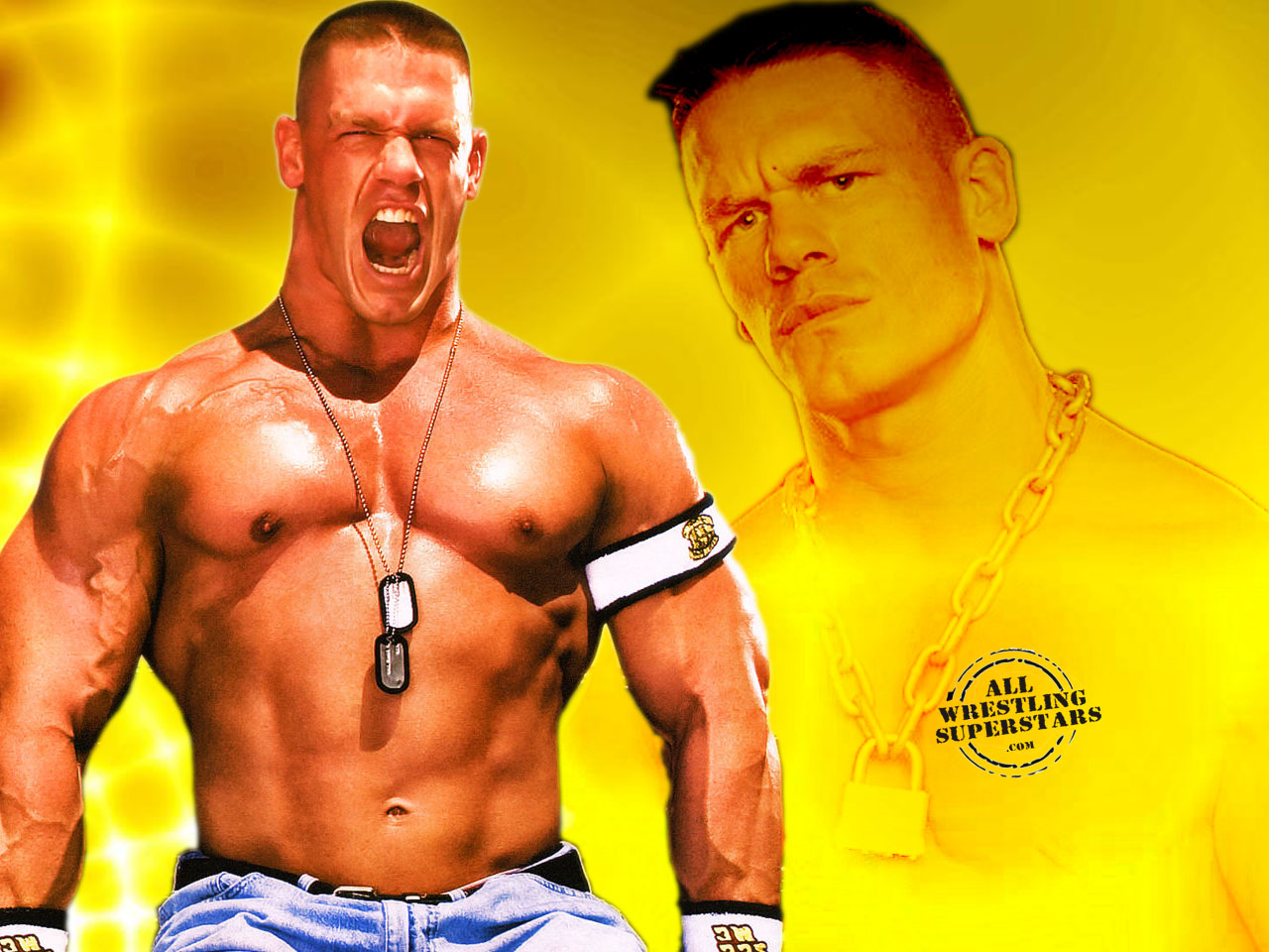 Wwe superstar john cena videos download
