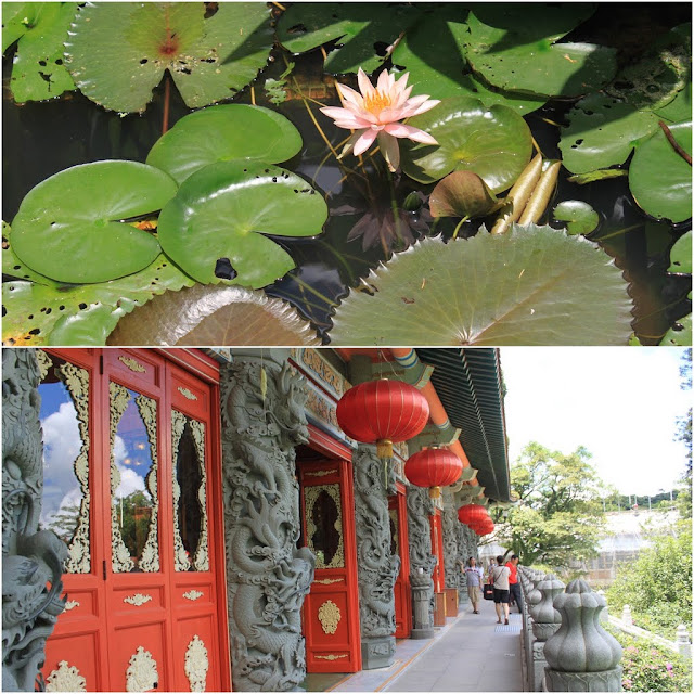 Dragon sculpture on a Chinese Temple and Lotus flower in the lake at Ngong Ping Village in Hong Kong