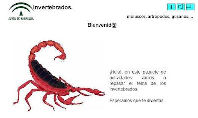 http://www.polavide.es