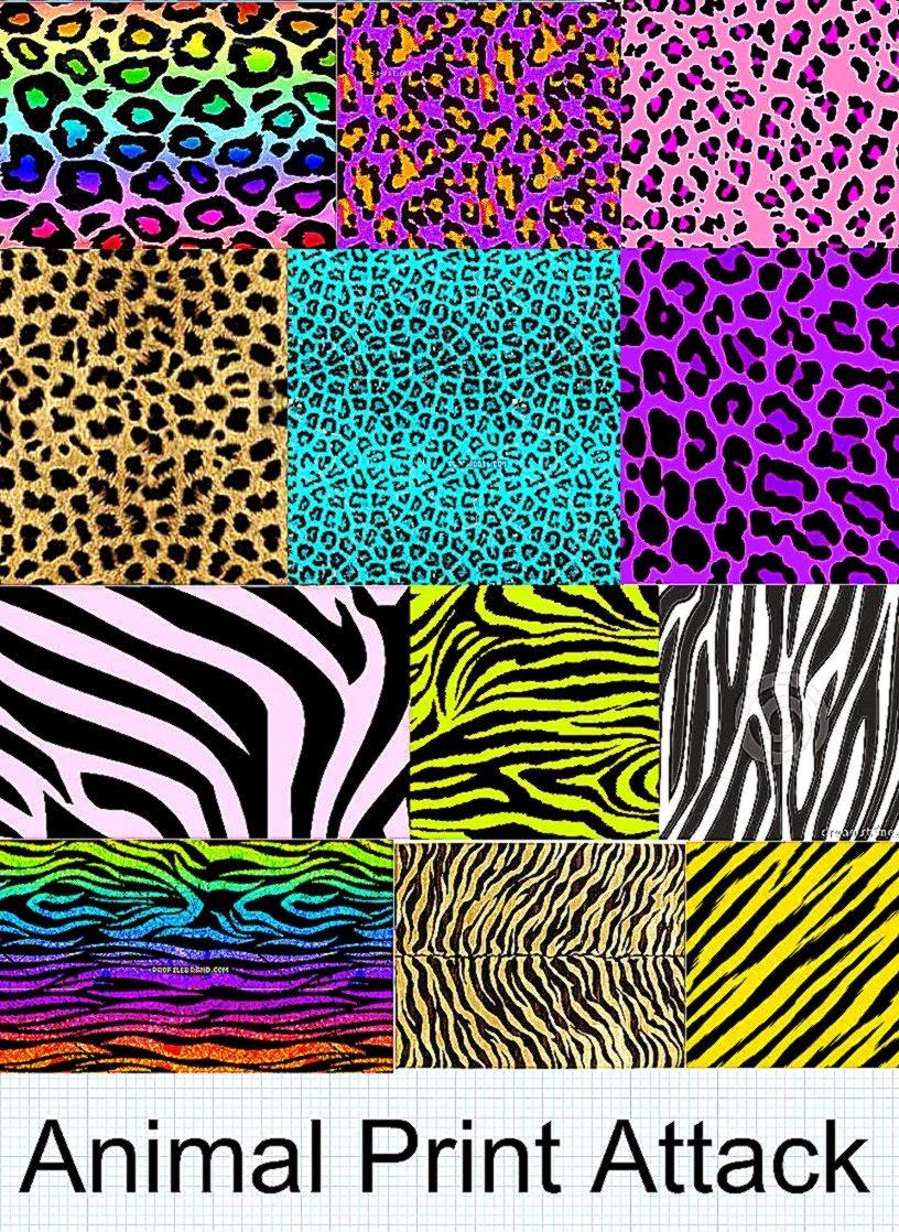 Neon zebra backgrounds free hd wallpapers for Zebra print wallpaper