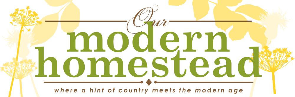 Our Modern Homestead