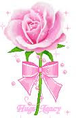 Amo Rosas!