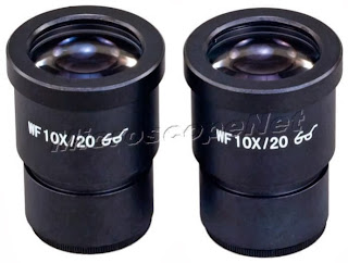 Pair of WF10X/20 High Eye-point Widefield Eyepieces for Stereo Microscopes 30mm