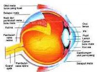 Cara tips merawat kesehatan mata anda