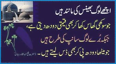 beautiful urdu inspirational quotes voice of pakistan