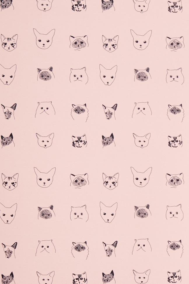 Cat Pattern Tumblr Wallpaper 1080p Beautiful Cat Wallpapers