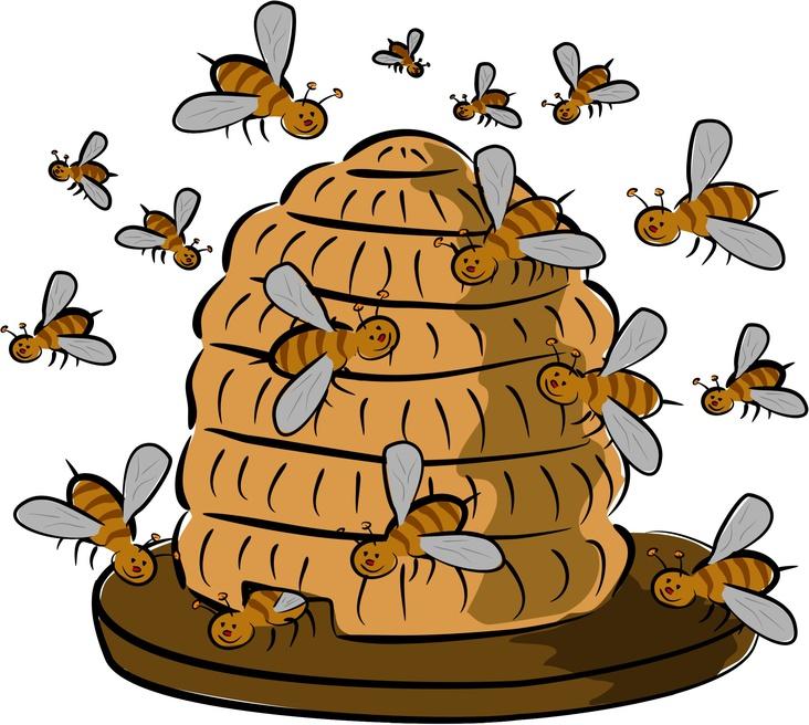 Schütze die Bienen ...