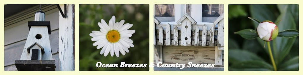 Ocean Breezes & Country Sneezes