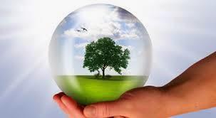 Pengaruh Kepadatan Populasi Terhadap Lingkungan (Biologi SMP Kelas 7)