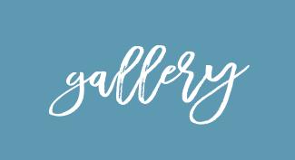 GALLERY & SOCIAL MEDIA
