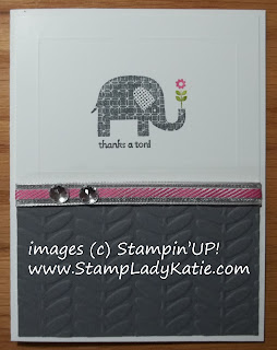 Card made with Stampin'UP!'s 2013 Sale-a-bration set: Patterned Occasions and Vine Street embossing folder
