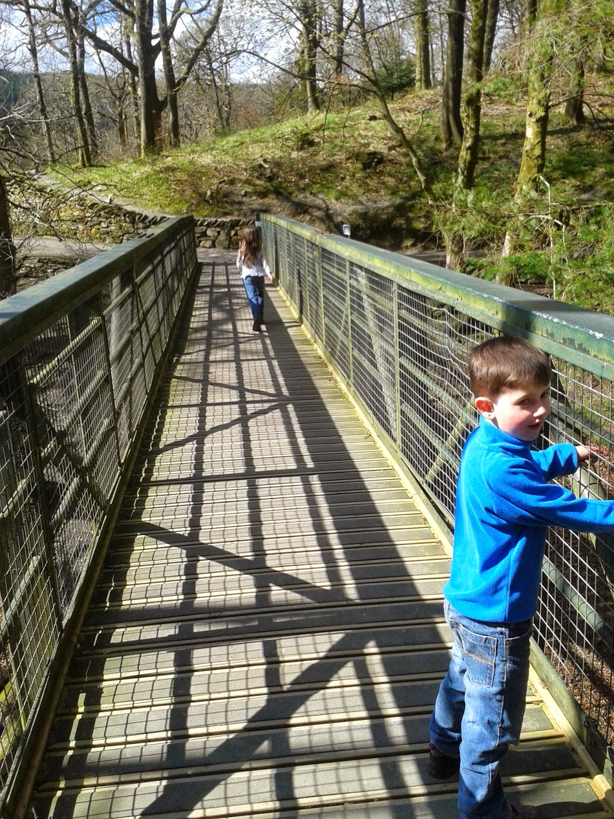 Grizedale Forest Gruffalo trail, nope not on the bridge.