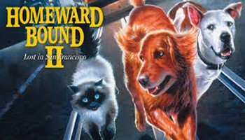 Homeward Bound II DvD