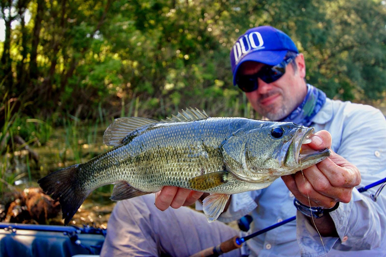Fishing in croatia and in the neighbourhood may 2015 for Fishing in croatia
