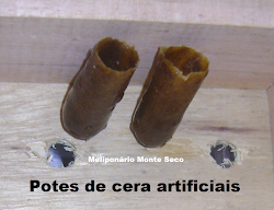 Potes de Cera Artificiais