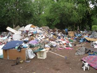 Una delle tante tesimonianze dello sgombero dei campi roma con i randagi lasciati a loro stessi