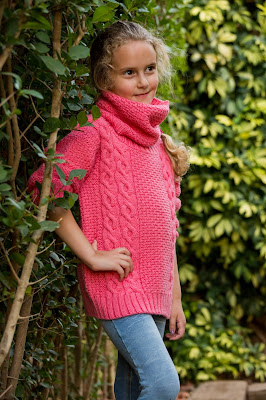 http://www.ravelry.com/patterns/library/rosetta-5
