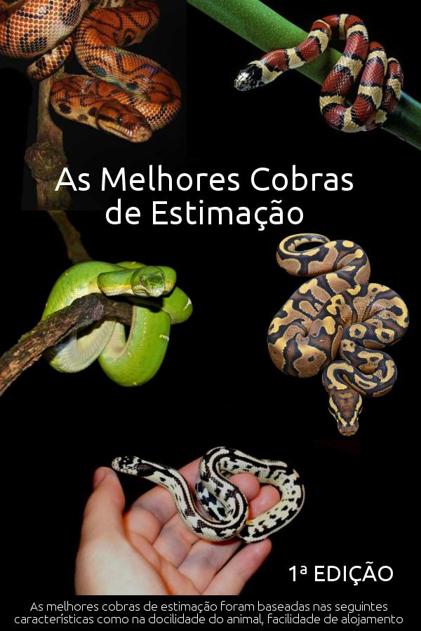 E BOOK As Melhores Cobras de Estimação 1ª Edição