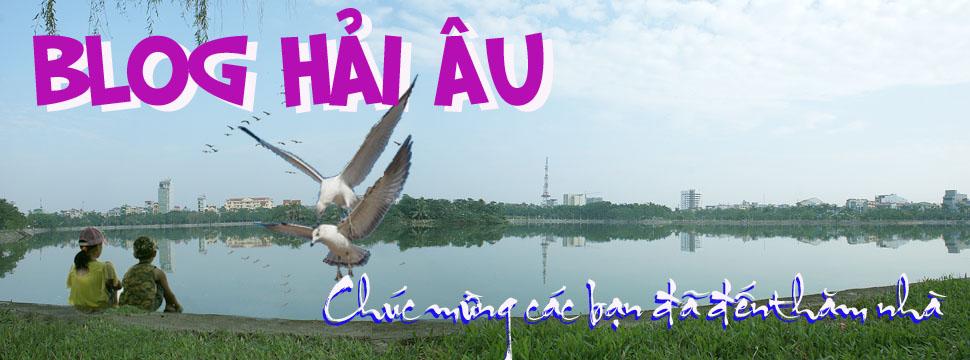 Blog Hai Au