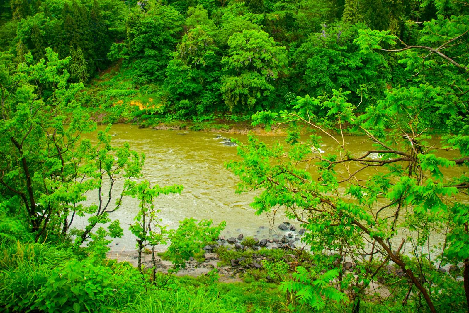 川 雨 濁る