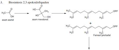 Biosintesis 2,3 epoksidasqualen 1