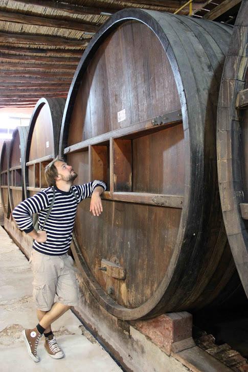 Vinmuseum