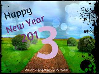 Beautiful-happy-new-year-2013-nature-wallpaper1