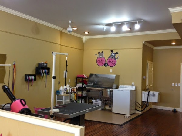 Photo dog grooming salon floor plans images 544 best for Dog grooming salon floor plans