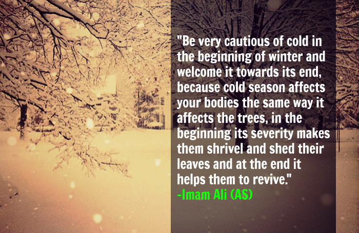 Be very cautious of cold in the beginning of winter and welcome it towards its end, because cold season affects your bodies the same way it affects the trees, in the beginning its severity makes them shrivel and shed their leaves and at the end it helps them to revive.