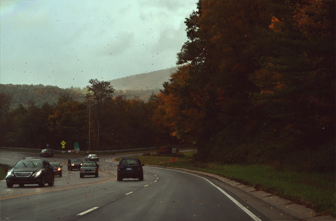 falling leaves, stormy weather