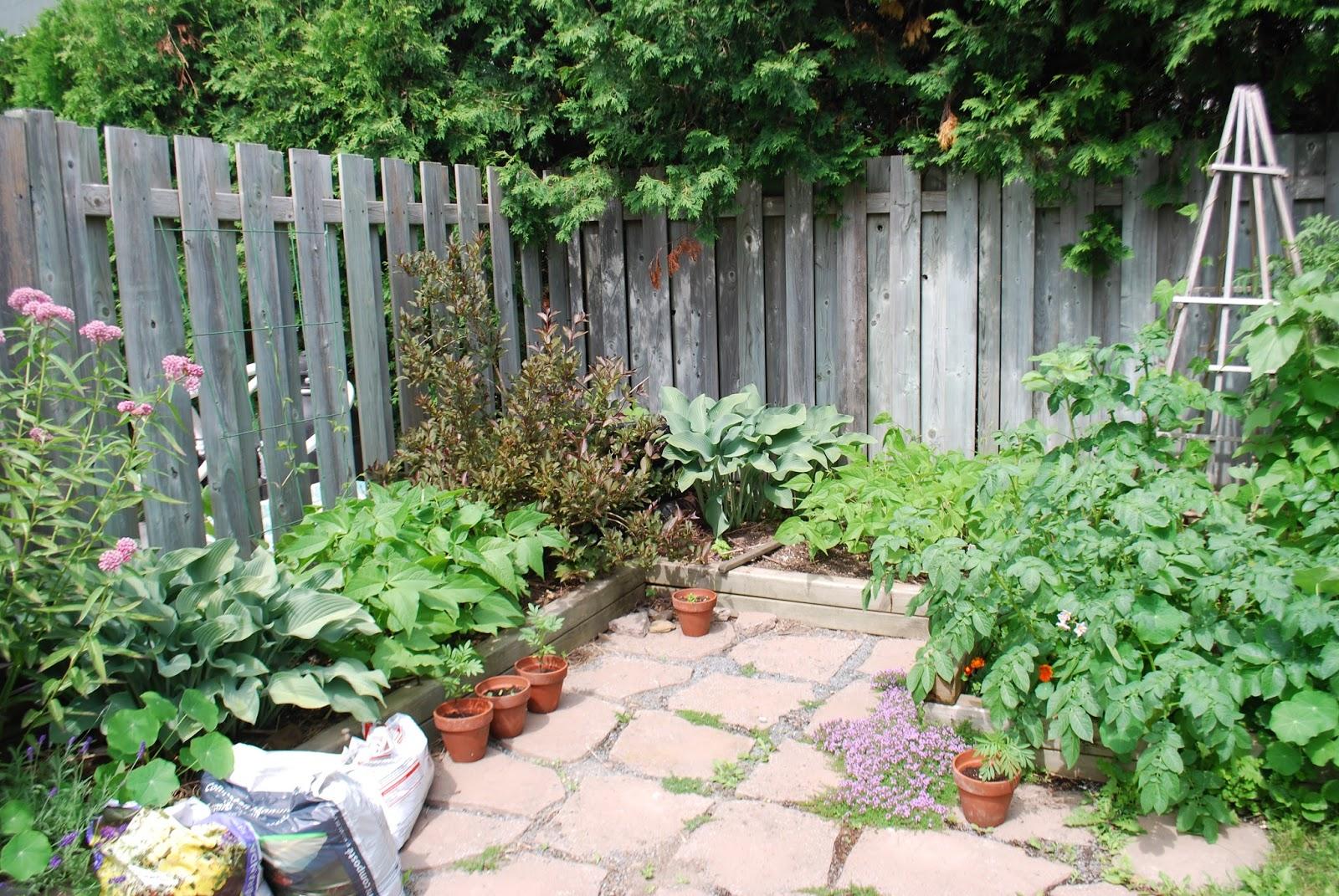 3 jardins au qu bec les succ s et les checs 2015 partie 1 for Autre jardin quebec