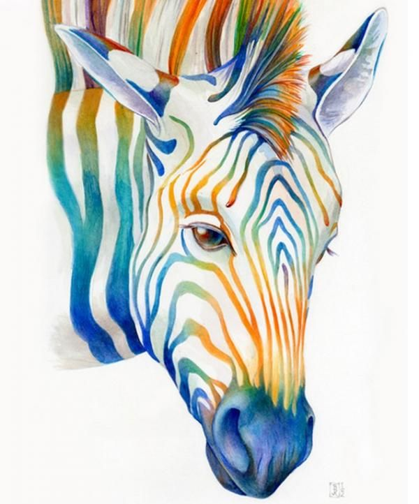 Ilustración de una zebra en acuarela
