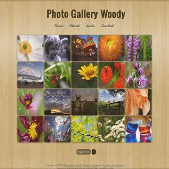 Photo Gallery Woody blogger template. photo template for blog. photo template for blogger. gallery template for blog. gallery template for blogger